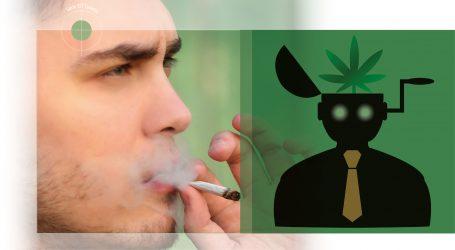 Projet de loi C-45 sur la légalisation du cannabis